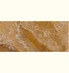 texture of the stone slab closeup vector image