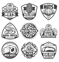 Vintage monochrome natural nuts labels set vector