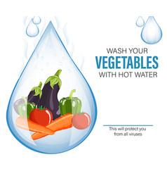 Wash vegetable for safety design vector