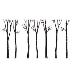 Birch tree silhouette background vector