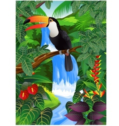 toucan bird in the jungle vector image vector image