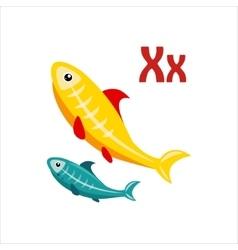 X-Ray Tetra Funny Alphabet Animal vector image