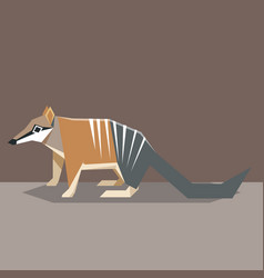 flat design numbat vector image