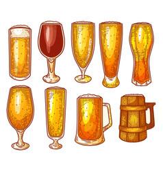 beer glasses pint mug craft brewery sketch vector image