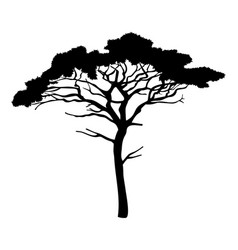 cartoon green tree isolated at vector image
