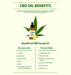 Cbd oil benefits vertical infographic vector