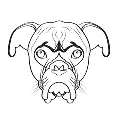 isolated boxer avatar vector image