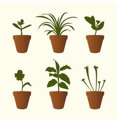 Plants in flowerpots vector image