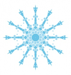 Snoflake rounded vector