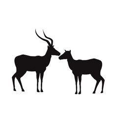 silhouette pair of a standing impala africa mammal vector image vector image