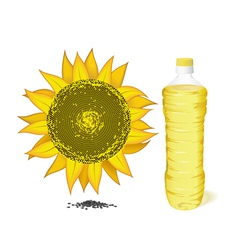 sunflower bottle and oil vector image vector image