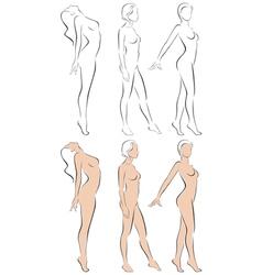 Stylized figures standing naked women vector