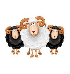 Cartoon sheep set vector