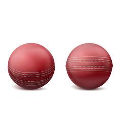 cricket balls set isolated on white background vector image