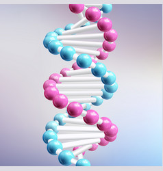 dna realistic vector image