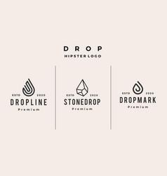 drop line stone logo icon hipster vintage retro vector image