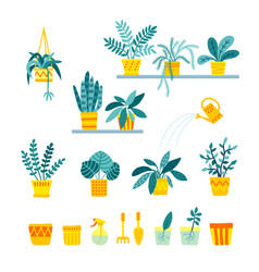 Set of indoor folliage plants houseplant care vector