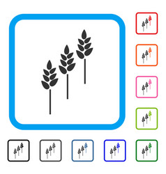 wheat plants framed icon vector image vector image