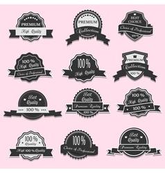 12 Premium Quality labels vector image