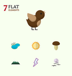 Flat icon bio set of bird gull peak and other vector