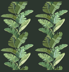 green tropical banana palm leaves and branches vector image