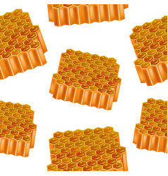 realistic detailed 3d honey combs seamless pattern vector image