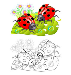 Two cute ladybirds sitting on a leaf colorful vector