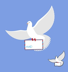 Postal pigeon and mailing envelope White Dove vector image