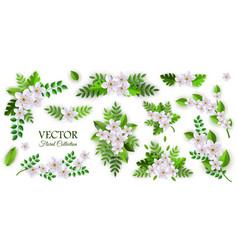 Floral compositions set vector