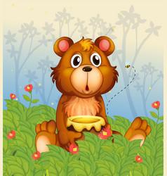Cartoon Honey Bear vector image vector image