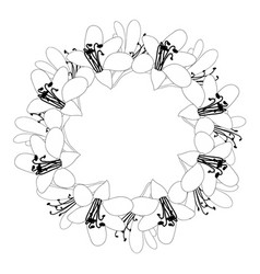 Agapanthus flower outline wreath vector