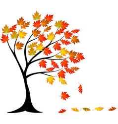 autumn tree cartoon vector image