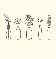 Flowers in bottles vector