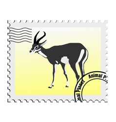 Gazelle stamp vector
