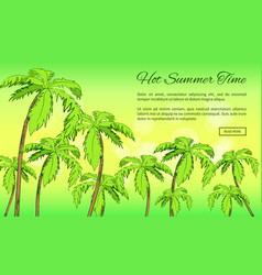 hot summer time banner with inscription vector image