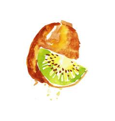 Juicy ripe kiwi fruit watercolor hand painting vector