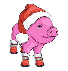 pig in a red santa claus hat and shoes isolated on vector image