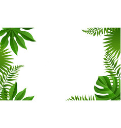 summer tropical leaves frame isolated white vector image