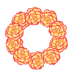 begonia flower picotee sunburst wreath vector image