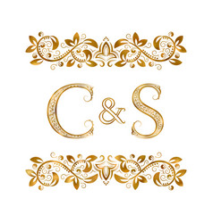 C and s vintage initials logo symbol the letters vector