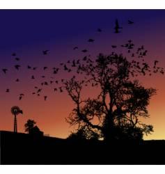 Farm sunset vector