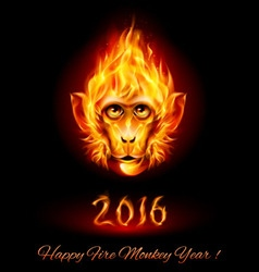 Fire monkey head vector
