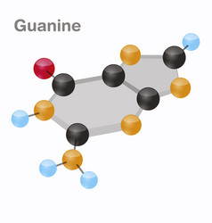 Guanine hexnut g purine nucleobase molecule vector
