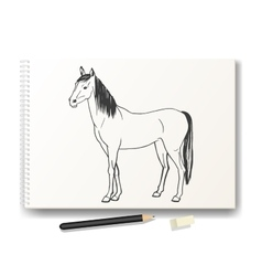 Horse drawn by hand in pencil on the album A4 vector
