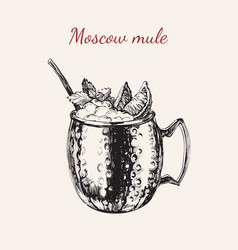 moscow mule hand drawn drink vector image