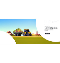 tractor with trailer full fresh ripe harvested vector image