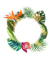 Tropical plants cicle design template bird vector