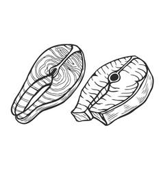 salmon fish tuna steak vector image