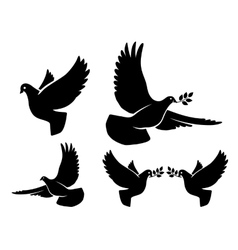 Dove silhouettes vector image vector image