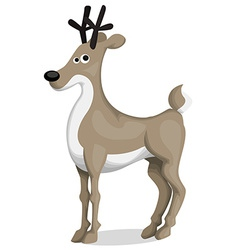 Cartoon deer vector